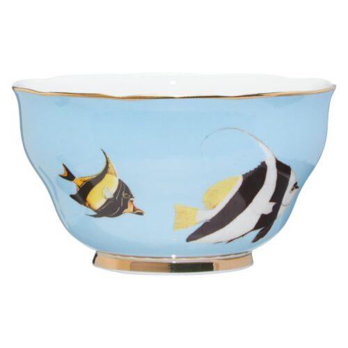 ciotola-fish-pesci-esotici